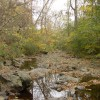 Bolin Creek Greenway