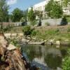 Proximity Hotel Stream Restoration