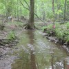 Kernersville Pump Station Stream Restoration